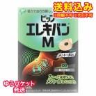 【DM便送料込み】ピップエレキバンM メントール入り 12粒