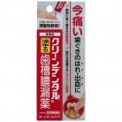 【第3類医薬品】クリーンデンタルN 歯槽膿漏薬 16g
