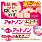 【ゆうパケット送料込み】【第2類医薬品】アットノンt コンシーラ 10g