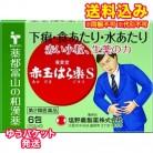 【ゆうパケット送料込み】【第2類医薬品】廣貫堂赤玉はら薬S 6包
