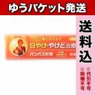 【ゆうパケット送料込み】【第2類医薬品】メディケアパンパス軟膏 15g