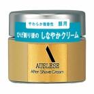 【医薬部外品】資生堂 アウスレーゼ アフターシェーブクリームNA 30g×3個