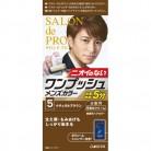 【医薬部外品】サロンドプロ ワンプッシュメンズカラー 5 ナチュラルブラウン