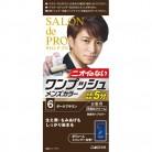 【医薬部外品】サロンドプロ ワンプッシュメンズカラー 6 ダークブラウン