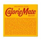 カロリーメイトブロック チョコレート味(4本入り)×10個